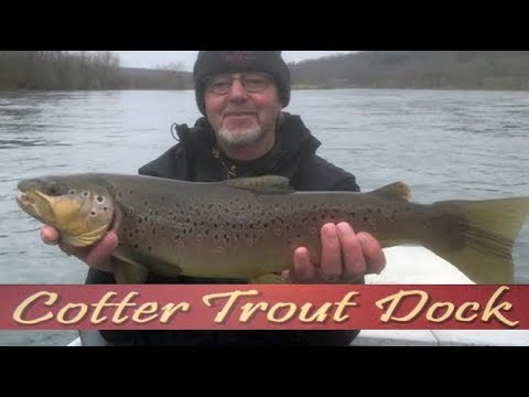 Arkansas White River Trout Fishing Report March 13, 2019