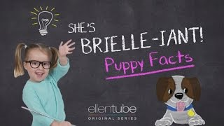 She's Brielle-iant, Puppy Facts
