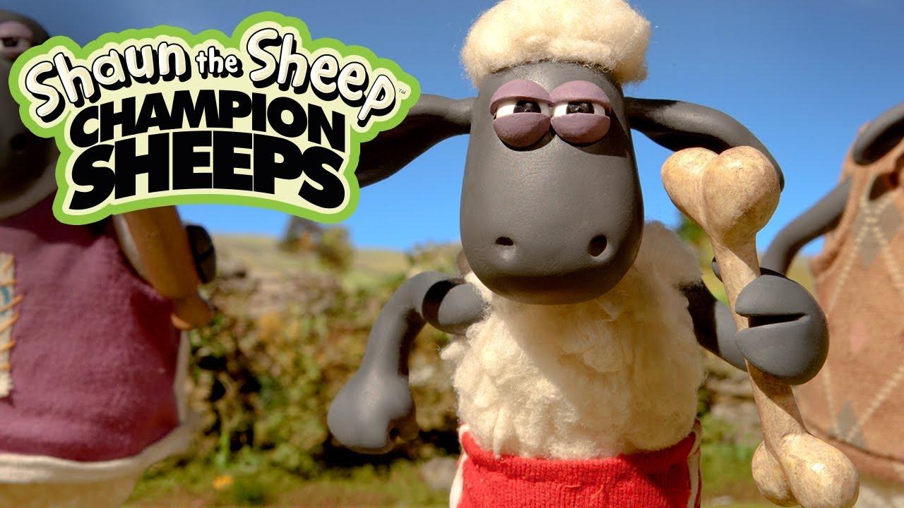 Đua tiếp sức | Championsheeps | Những Chú Cừu Thông Minh [Shaun the Sheep]