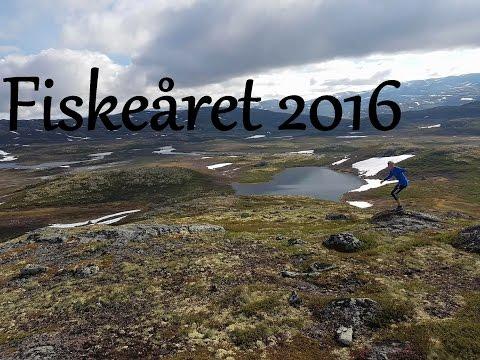 Fiskeåret 2016 - Ørretfiske på Vestlandet