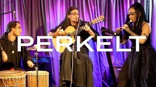 Perkelt - Robin (Live at Phoenix Session IV)