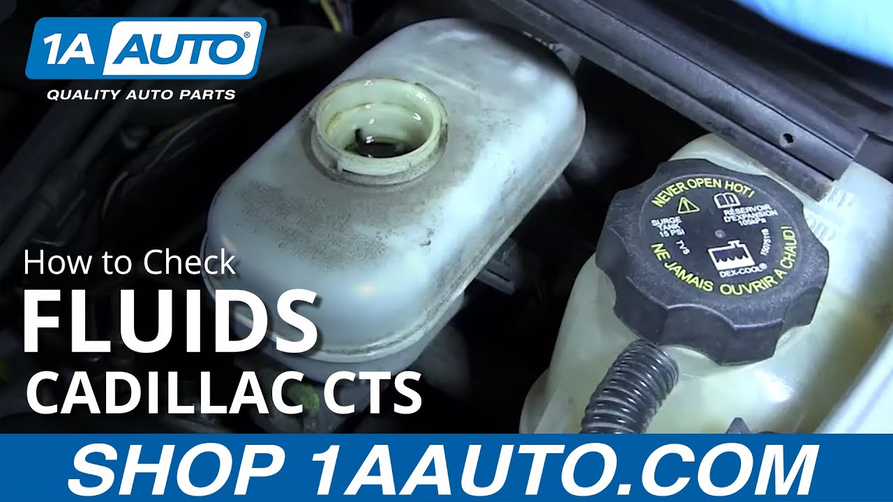 hight resolution of how to check your fluids on a 03 07 cadillac cts
