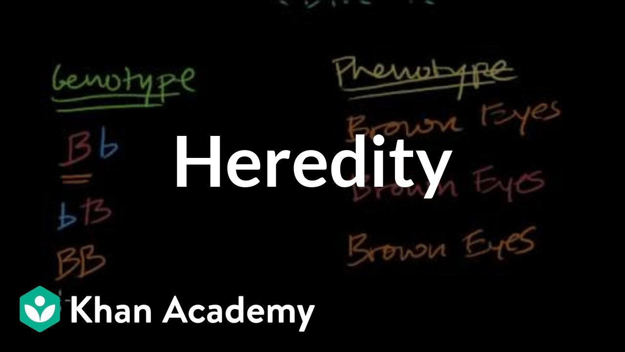 medium resolution of Introduction to heredity (video)   Khan Academy