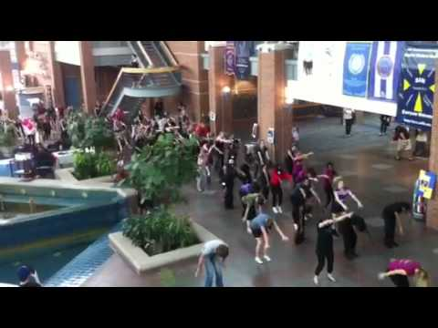 Collin College Flash Mob