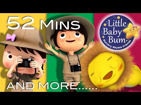 Going On A Lion Hunt | Plus Lots More Nursery Rhymes | From LittleBabyBum!