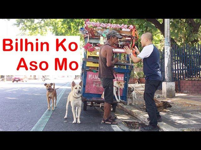 BILHIN KO ASO MO (Homeless)
