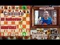 La Extracción del Rey más brutal de toda la historia del ajedrez | INMORTAL