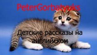 Детские рассказы на английском Little cat Musya