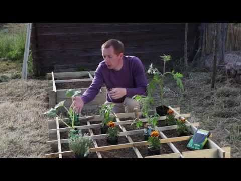 Jardinage pr parer la terre pour un potager doovi - Organiser son jardin potager ...