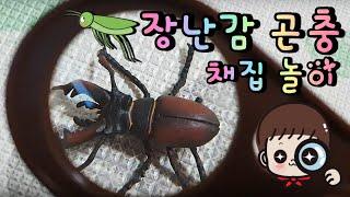 집에서 장난감 곤충채집 하는 지환이 Jihwan picks toy insects at home