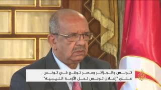مصر وتونس والجزائر يوقعون