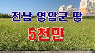 [부동산 경매물건] 전남 영암군 삼호읍 용당리 답 경매…