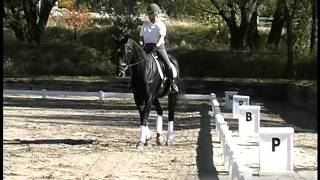Dressage ProTips - Sally Oconnor Gives Tips on Equestrian Dressage Riding and Jumping