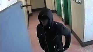 NYPD Wanted: Robbery (Brooklyn)