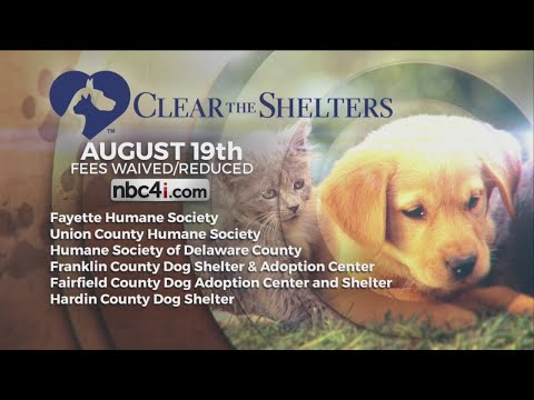 Clear the Shelters comes to Central Ohio this weekend