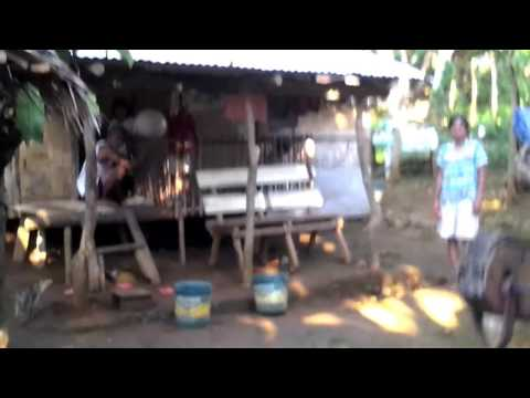 PHILIPPINE LIFE: A Provincial Morning!