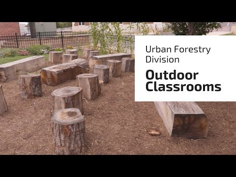 DDOT Urban Forestry Outdoor Classroom - Langley Elementary School