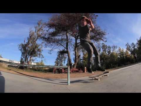 Til Til Skateshop Skate