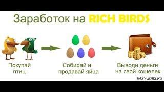 Money Birds.top Игра с выводом денег Зарабатывай на своих яйцах!