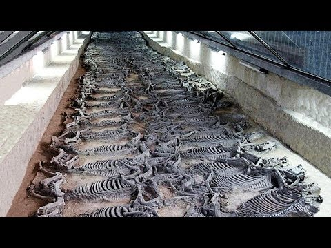 12 Most Amazing Archaeological Discoveries