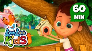 Two Little Dickie Birds - Learn English with Songs for Children | LooLoo Kids