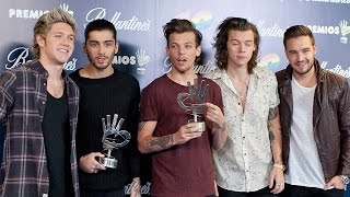 Will One Direction Break Up After Their Tour?