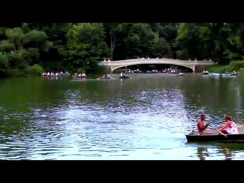 New York Toys R Us/Central Park Footage