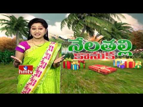 Farmer Bhaskar Earns High Profits from Different Crops Cultivation | Nela Talli | HMTV