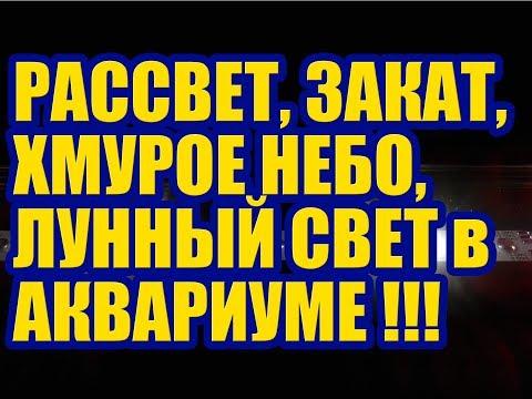 Энциклопедия Кругосвет