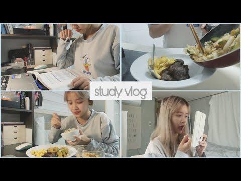 Daily Vlog   Một ngày mưa ở nhà học một mình   DU HỌC HÀN QUỐC   Ly Nguyễn