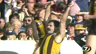 VFL 1983: Grand Final - Hawthorn highlights vs. Essendon