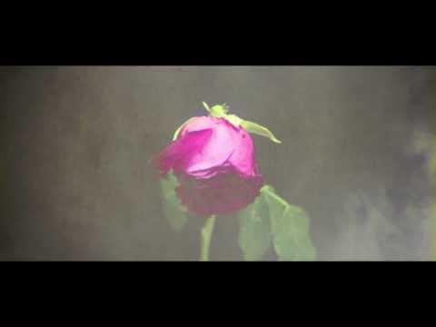 ตายช้าช้า - ธชย [Official Lyrics Video]