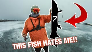 This Fish Hates Me FISHING FIRST ICE PIKE