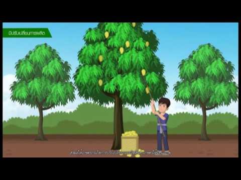 เรื่องตลาดเกษตรกรคืออะไร (3 นาที) แหล่งสื่อ กรมส่งเสริมการเกษตร