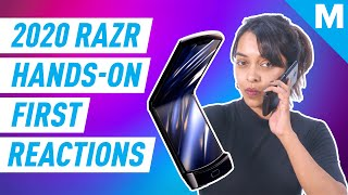 -2020-moto-razr-reactions-mashable