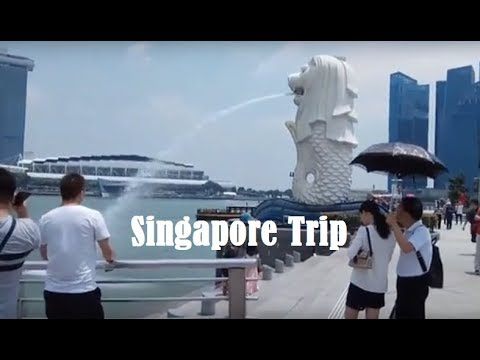 Trip in Singapore for 7 days!