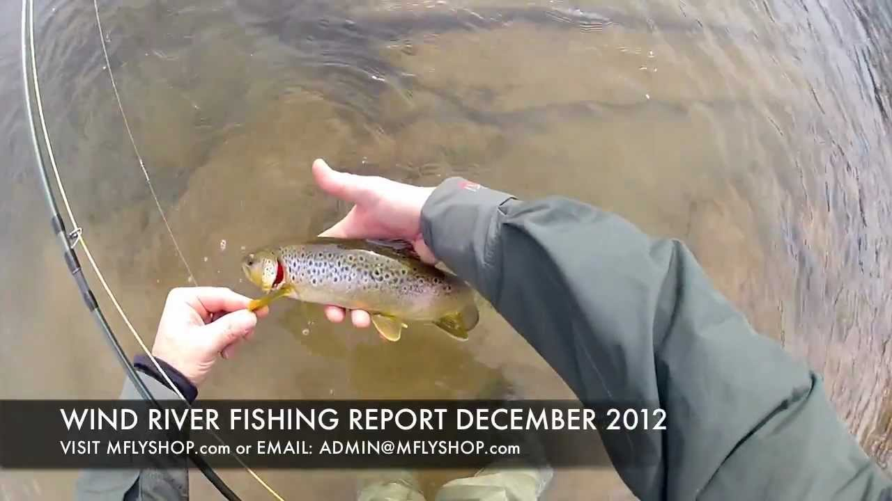 Winter fly fishing dubois wyoming fishing report wind for Wyoming fishing report