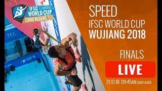 IFSC Climbing World Cup - Wujiang 2018 - Speed - Finals