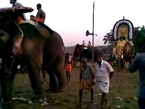 aruvayi-kunnamkulam pooram