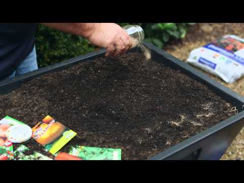 The Change Project - Growing vegetables from seeds