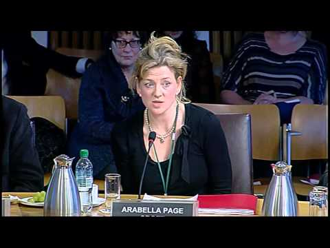 Economy, Energy and Tourism Committee - Scottish Parliament: 21st January 2015