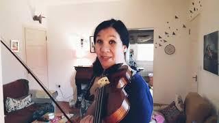 Stentor Verona 4/4 violin outfit Verona violin review