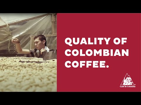 Colombian Coffee Stories: Quality of Colombian Coffee