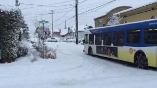 Portland snowstorm 2017: Skiing down Alberta Street