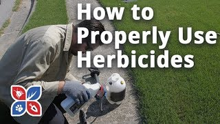 Do My Own Lawn Care - How to Properly Use Herbicides