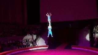 Новосибирский цирк. Новогоднее шоу 2017.