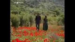 Piet Veerman - LIving To Love You