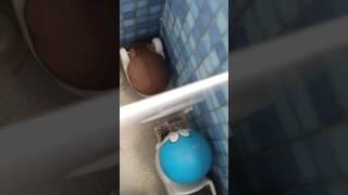 Doraemon in public Toilet