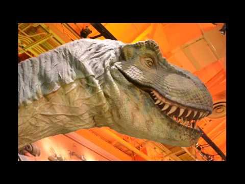 Toysrus Manualidades.Dinosaurio De Toysrus New York Belen Kids Youtube