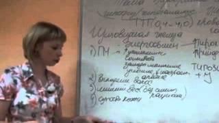 12 занятие Эндокринная система